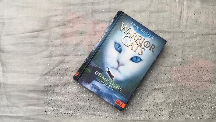 warrior cats: gefährliche spuren