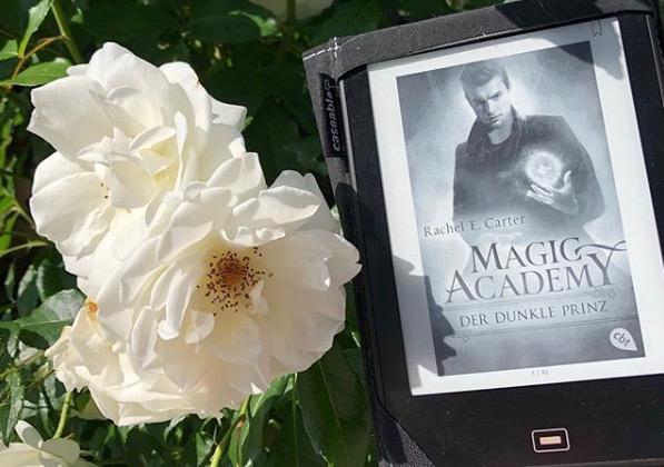 Magic Academy: Der dunkle Prinz